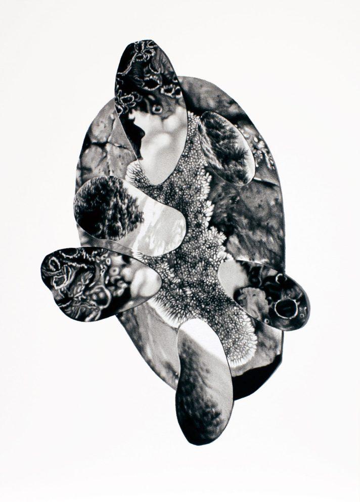 Sin título 2, 2020. Lápiz-carbón sobre papel montado sobre dibond, 50 x 35 cm