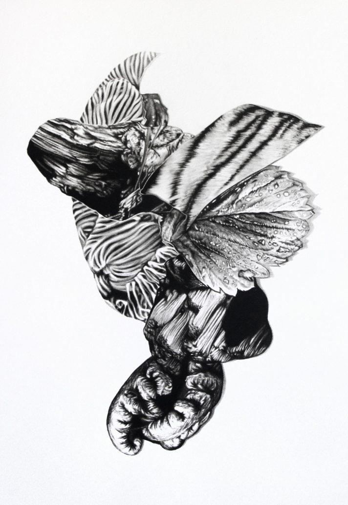 Sin título 1, 2020. Lápiz-carbón sobre papel montado sobre dibond, 50 x 35 cm